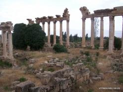 Baalbek. Romanian temple complex (Heliopolis) (2)
