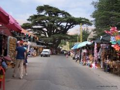 1. Arz ar-Rabb (Cedars of God) reserve (2-1)