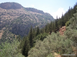 Wadi Kadisha (Kadisha Valley) (4)