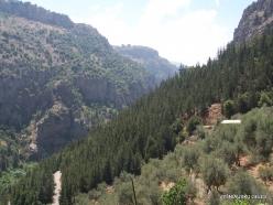Wadi Kadisha (Kadisha Valley) (5)