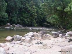 Perak. Near Tapah. Hutan Lipur Kuala Woh (2)
