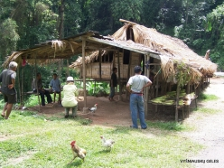 Perak. Near Tapah. Village of Orang Asli peoples