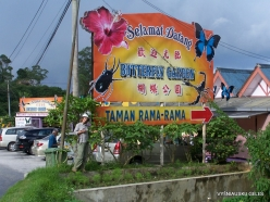 Pahang. Near Tanah Rata. Cameron Highland Butterfly Farm (1)