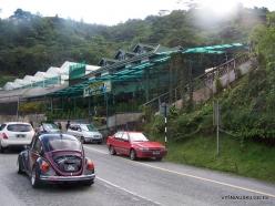 Pahang. Near Tanah Rata. Green Farm (1)