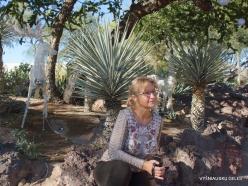 1 Las Vegas. Ethel M Cactus Garden (3)