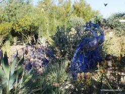 1 Las Vegas. Ethel M Cactus Garden (36)