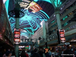 Las Vegas. Fremont Street (4)