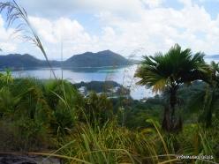 Seychelles. Praslin. Fond Ferdinand (12)