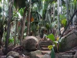 Seychelles. Praslin. Fond Ferdinand