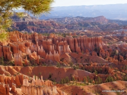 Bryce Canyon National Park (12)