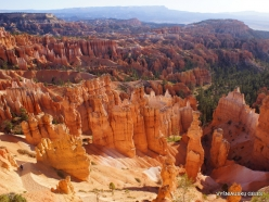 Bryce Canyon National Park (17)