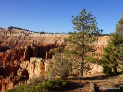 Bryce Canyon National Park (19)
