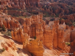Bryce Canyon National Park (22)