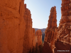 Bryce Canyon National Park (33)