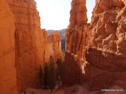Bryce Canyon National Park (35)