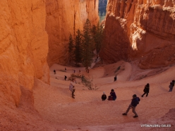 Bryce Canyon National Park (37)