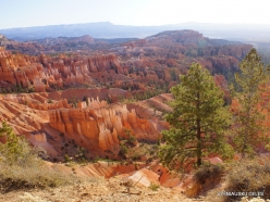Bryce Canyon National Park (4)