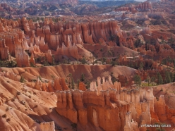 Bryce Canyon National Park (41)