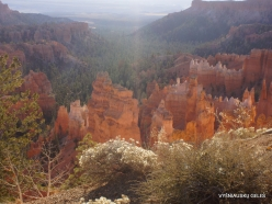 Bryce Canyon National Park (6)