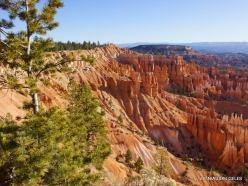 Bryce Canyon National Park (8)