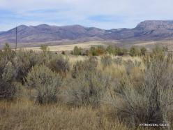 Central Utah steepe (10)