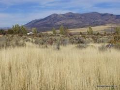 Central Utah steepe (5)