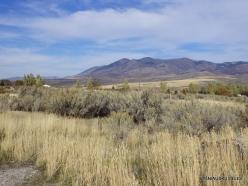 Central Utah steepe (6)