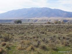 Central Utah steepe (8)
