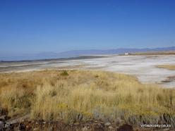 Great Salt Lake (17)