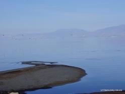 Great Salt Lake (7)
