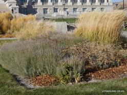 Salt Lake City. Capitol Hill landscaping (2)