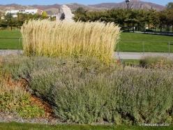Salt Lake City. Capitol Hill landscaping