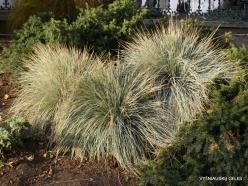 Salt Lake City. Temple Square landscaping (4)