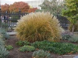 Salt Lake City. Temple Square landscaping (5)