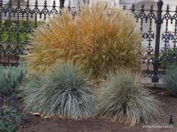 Salt Lake City. Temple Square landscaping (6)