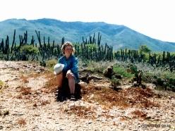 Margarita Isl. Playa El Agua (6)