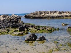Habonim Beach Nature Reserve. Beach (7)