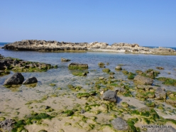 Habonim Beach Nature Reserve. Beach (8)