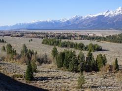 Grand Teton National Park (23)