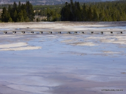 Yellowstone . Midway Geyser Basin. Grand Prismatic Spring (12)
