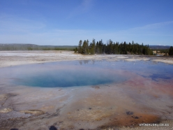Yellowstone . Midway Geyser Basin. Torquoise Pool (1)