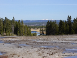 Yellowstone . Midway Geyser Basin. Torquoise Pool (2)