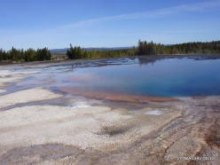 Yellowstone . Midway Geyser Basin. Torquoise Pool (3)