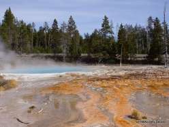 Yellowstone. Fountain Paint Pot (6)