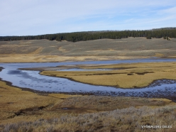Yellowstone. Hayden Valley (1)