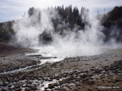 Yellowstone. Mud Volcano Area (9)