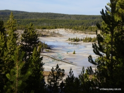 Yellowstone. Norris Geyser Basin (1)