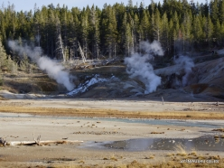 Yellowstone. Norris Geyser Basin (10)