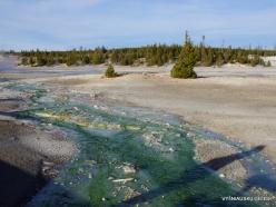 Yellowstone. Norris Geyser Basin (12)