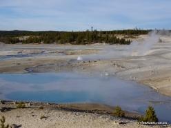 Yellowstone. Norris Geyser Basin (15)